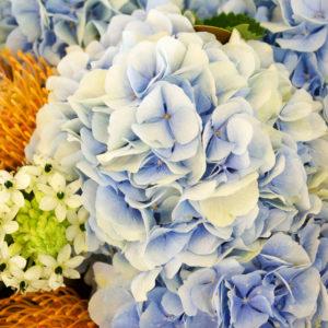 Bouquet Parisien - Chez les amis - 1