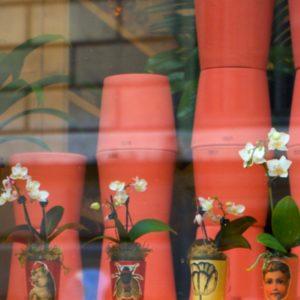 Vases Pop Pop Pop - 02